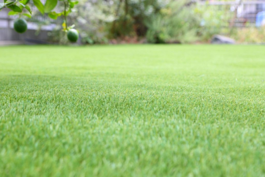 本物の人工芝… 芝楽!